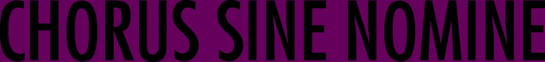 CSN Schriftzug